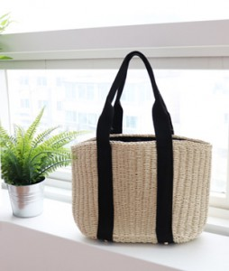 <br> Black line Bag <br><br>