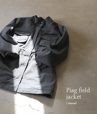 Piag field[821] jk<br>